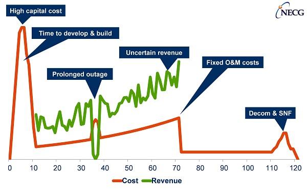 NECG- Nuclear Cash Flow